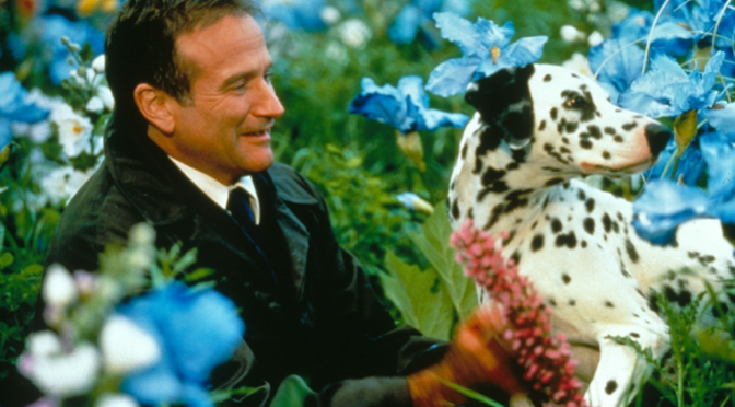 The Bittersweet Lessons of Robin Williams