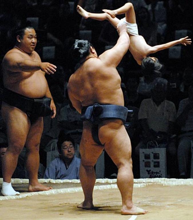 Midget sumo wrestling