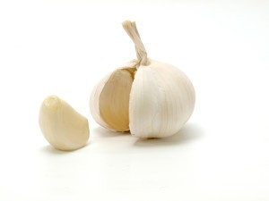 head-of-garlic