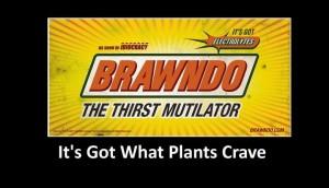 plants crave